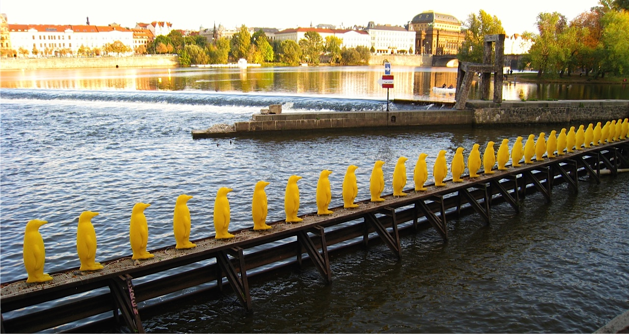 Yellow Penguins on the waterfront at Kampa Museum Prague