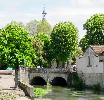Bouzaise River resurfaces from under Beaune